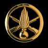 Insigne de l'Infanterie